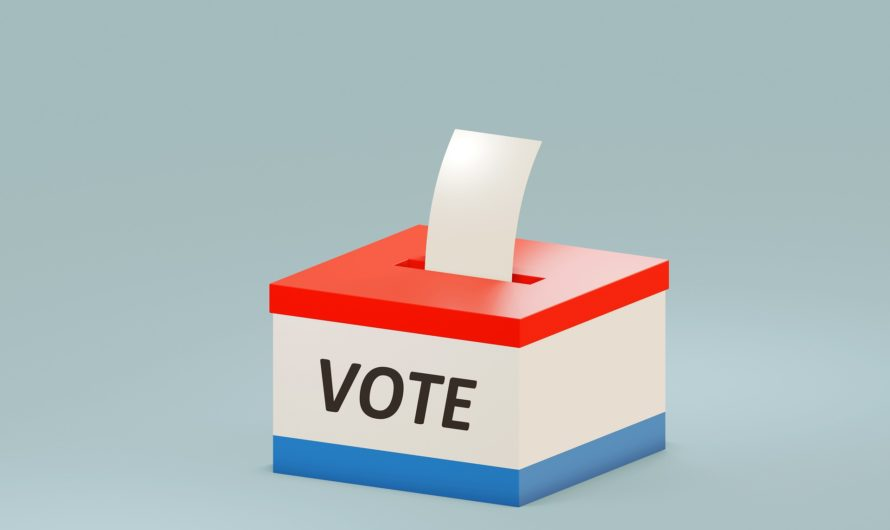 States Grapple With Voting Regulations